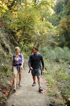 hikers in wooded forest